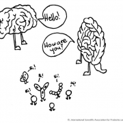 brain-gut relationship illustration